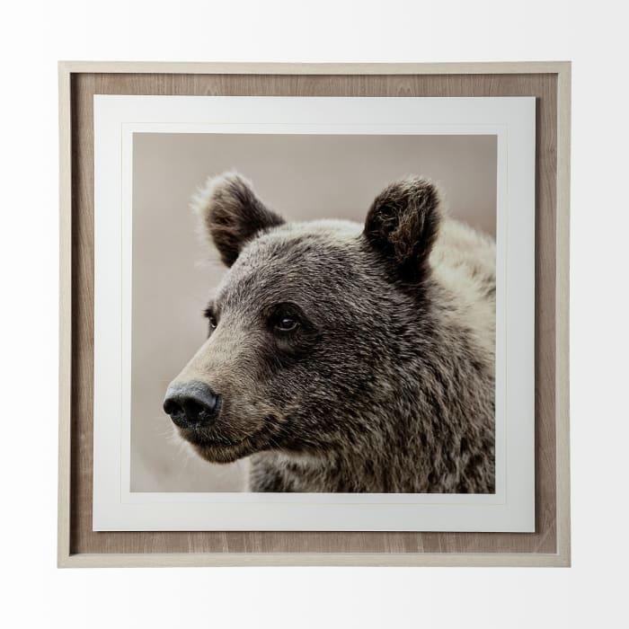 Bear Focus Hush Wrapped Canvas Wall Art