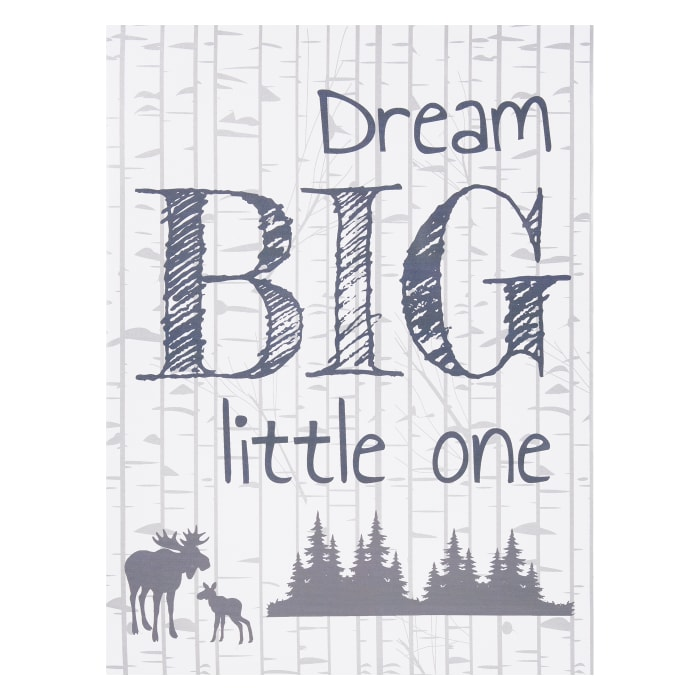 Kids Dream Big Little One Canvas Wall Art