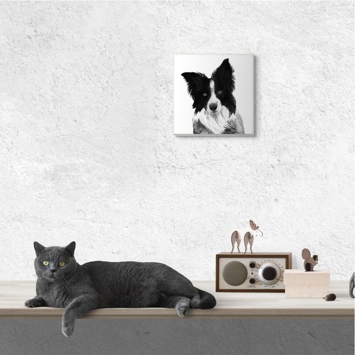 Border Collie Pet Dog Portrait Black White Wood Wall Art, 12 x 12