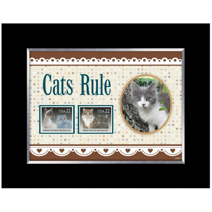 Cats Rule Photo Wall Frame