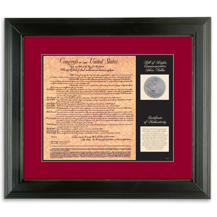 Birth of a Nation - Bill of Rights Wall Frame