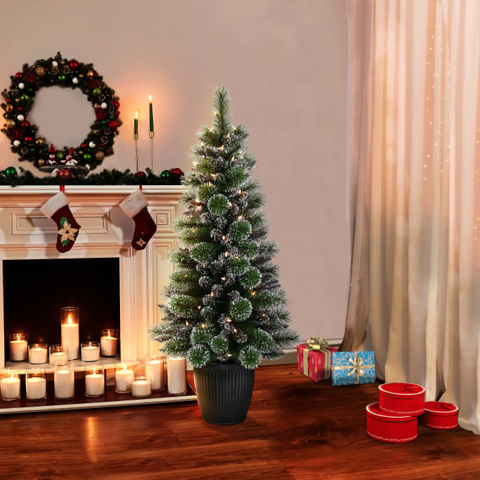 Gerald Pre-Lit 4' 70 Lights Green Potted Glitter Artificial Christmas Tree