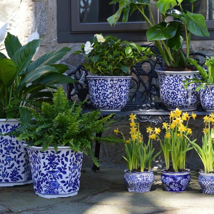 Florentine Blue and White Garden Planter Set