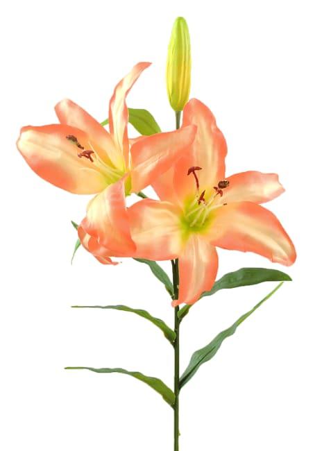 Flower Tiger Lily Slight Pink (Set of 4)