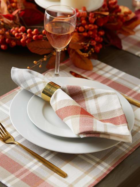 Thanksgiving Cozy Picnic, Plaid Napkin Set