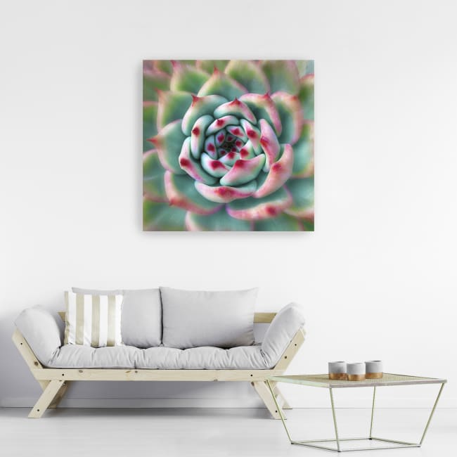 Deep Red Tips Canvas Giclee
