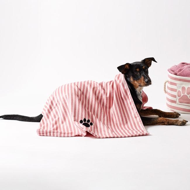 Bone Dry Rose Stripe Embroidered Paw Pet Towel