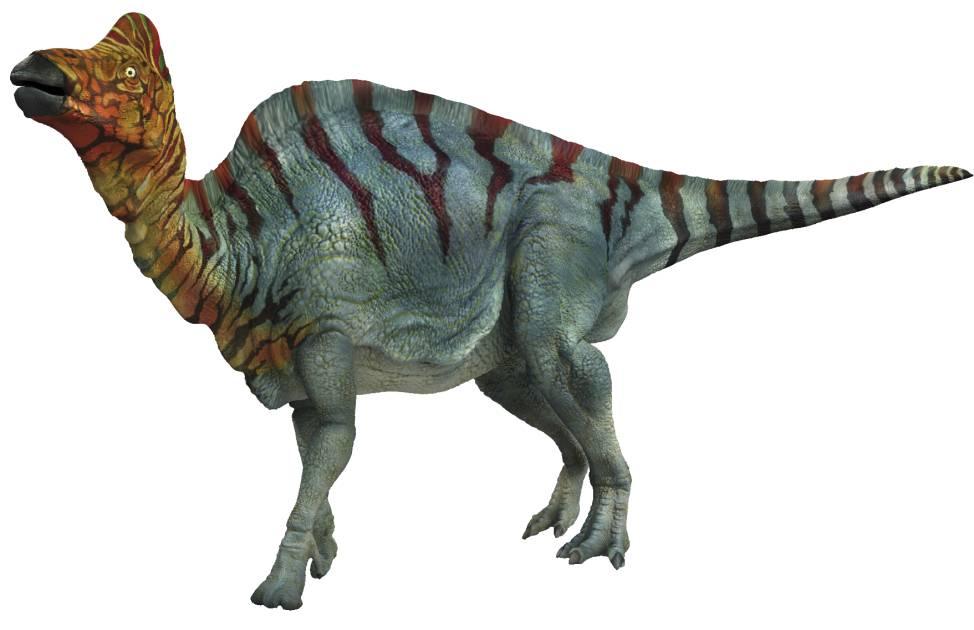 Ouranosaurus  Wikikids