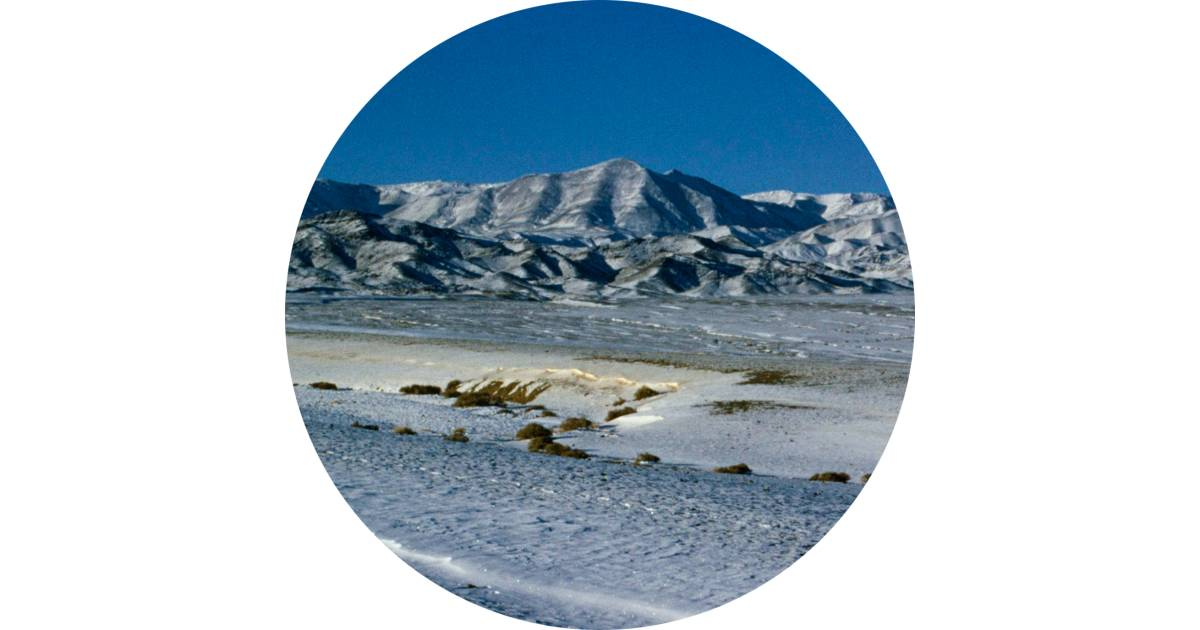 Cold Desert Facts  Cold Desert Location  DK Find Out
