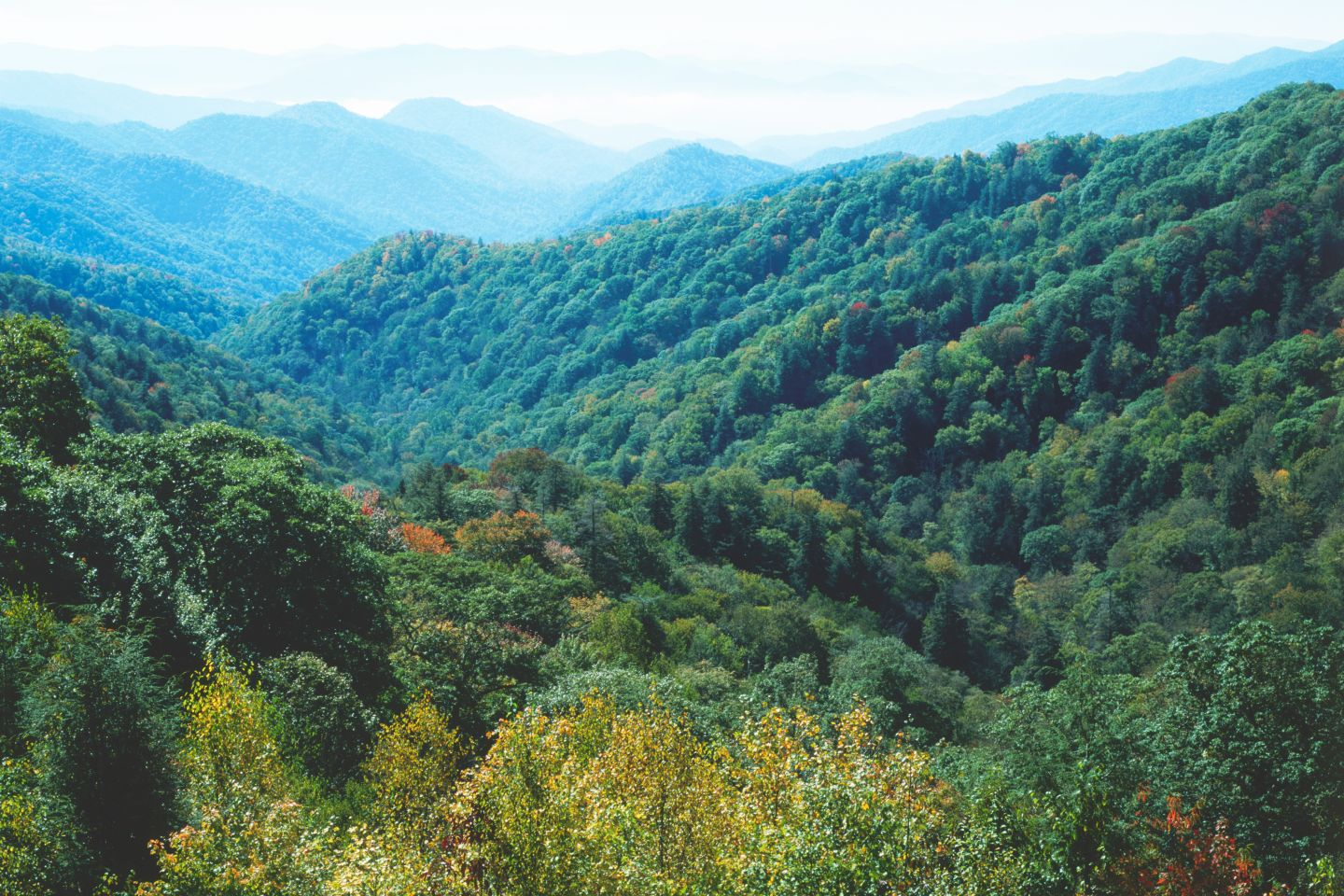North Carolina Mountain Region Facts For Kids