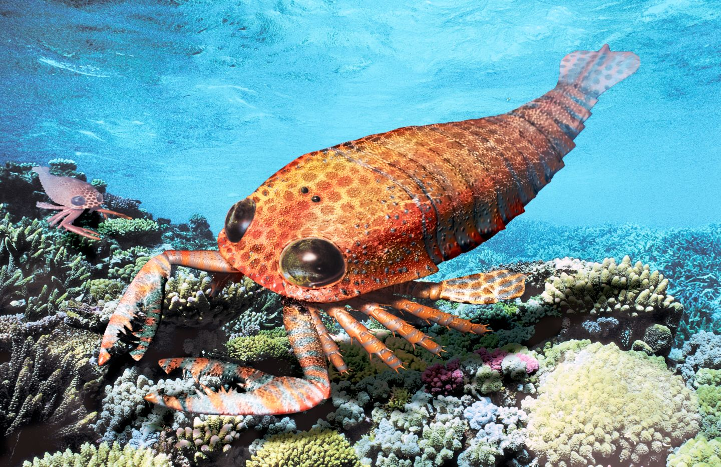Ancient Sea Scorpion   Underwater Scorpion   DK Find Out