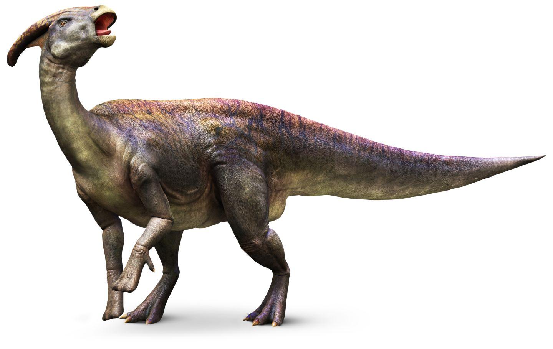 Feliz Cumple, Glumyglu!!!! Parasaurolophus_mh9k5i