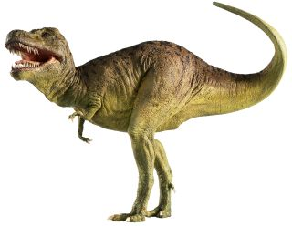 A Brief History of Dinosaurs  Live Science