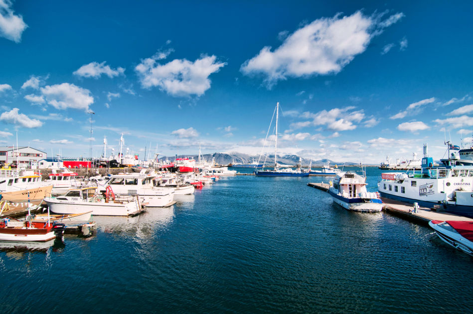 Reykjav k harbour area reykjav k dk eyewitness travel for Icelandic fish and chips nyc