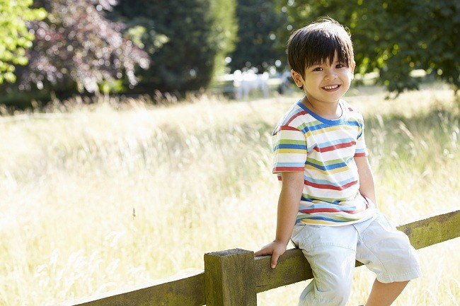 Portrait Of  Asian Boy Sitting On Fence In Countryside