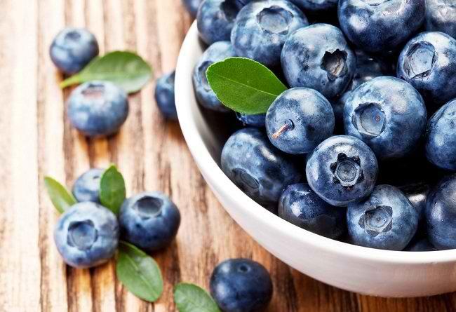 manfaat blueberry - alodokter