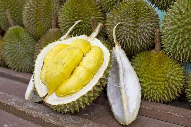 ini manfaat durian bagi kesehatan tubuh - alodokter