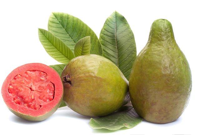 Ambil manfaat daun jambu biji tidak hanya buahnya - alodokter