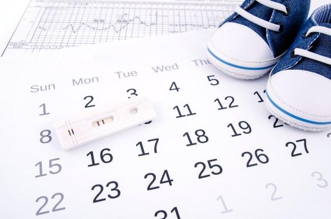 menentukan usia janin dengan teknik menghitung usia kehamilan - alodokter