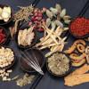 Selidiki Manfaat Tanaman Obat untuk Berbagai Penyakit
