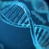 ตรวจ DNA เรื่องสำคัญที่ควรรู้