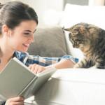 Waspada Bahaya Bulu Kucing
