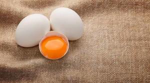 Berbagai Manfaat Kuning Telur dan Risiko yang Menyertainya