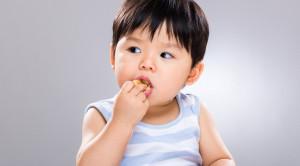 Memperkenalkan Makanan Bayi Sesuai Tingkatan Usia