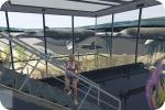 GTA 5 Aquarium | <alebal web Blog>