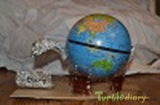 Turtle with Diary - Earth Day Contest April 2015 Submission
