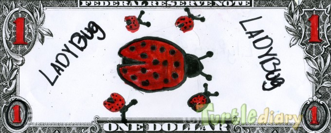 LadyBug Fever - Design Your Own Money Contest March 2015 Submission