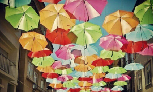 Зонтик сонник