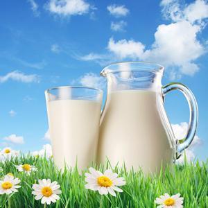 Сухое молоко как делается