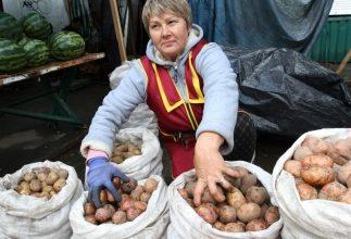 Как реализовать картофель