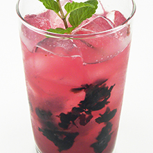 Handcrafted Blueberry Shrub Soda