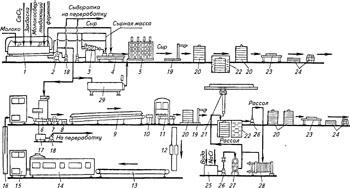 Технология производства сыров рассольных