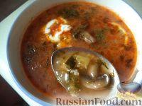 Фото к рецепту: Солянка с консервированными грибами
