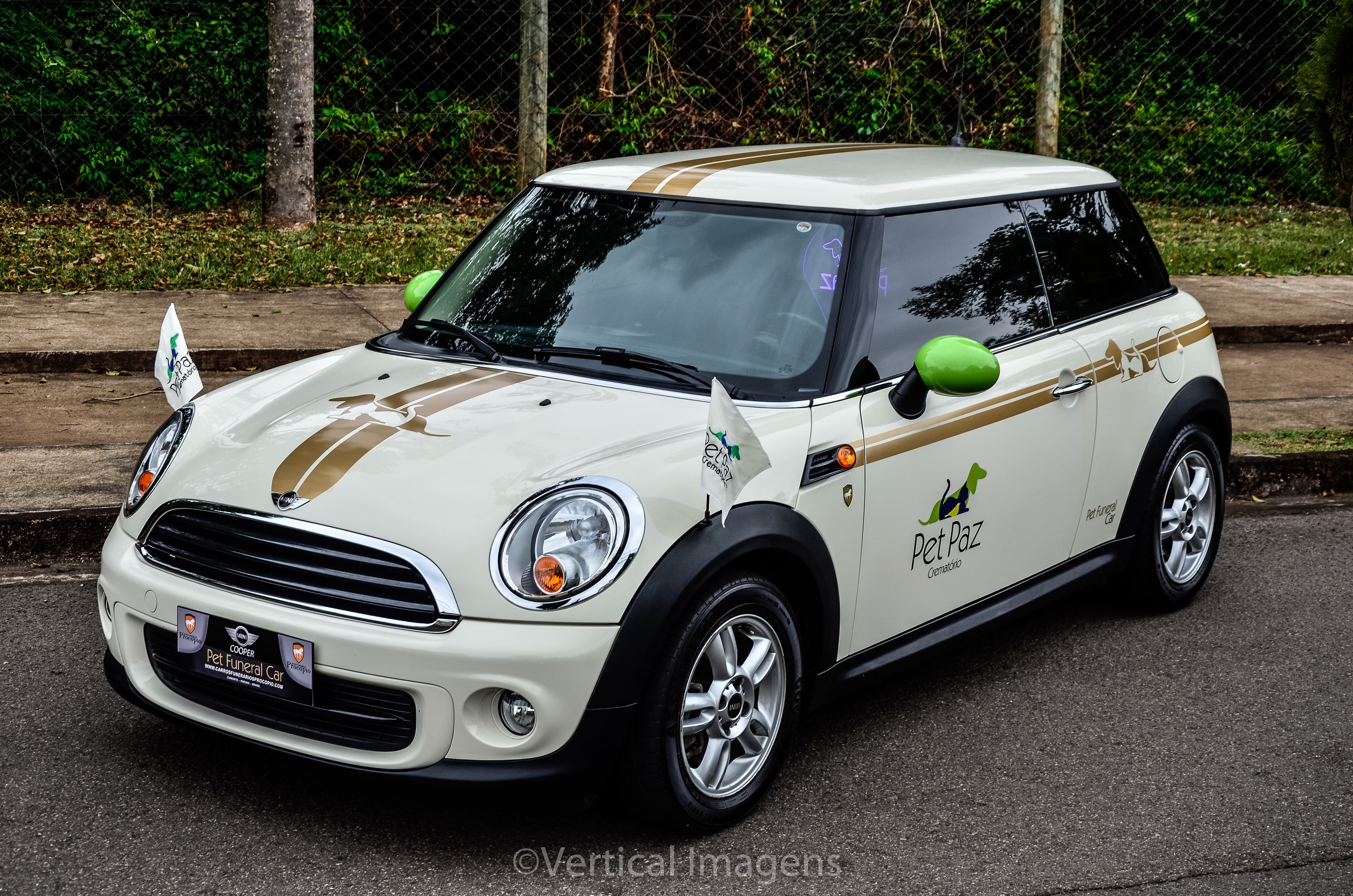 pet funeral mini cooper frente