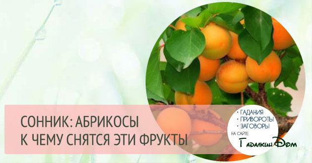 Сон кушать абрикосы