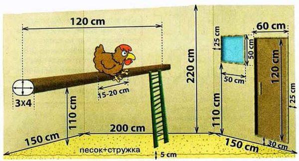 Птичник для кур строительство и устройство фото