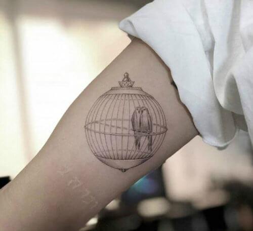 Значение татуировки клетка