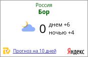 Бор нижегородской области
