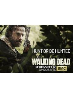 Сколько будет серий 5 сезона ходячих мертвецов
