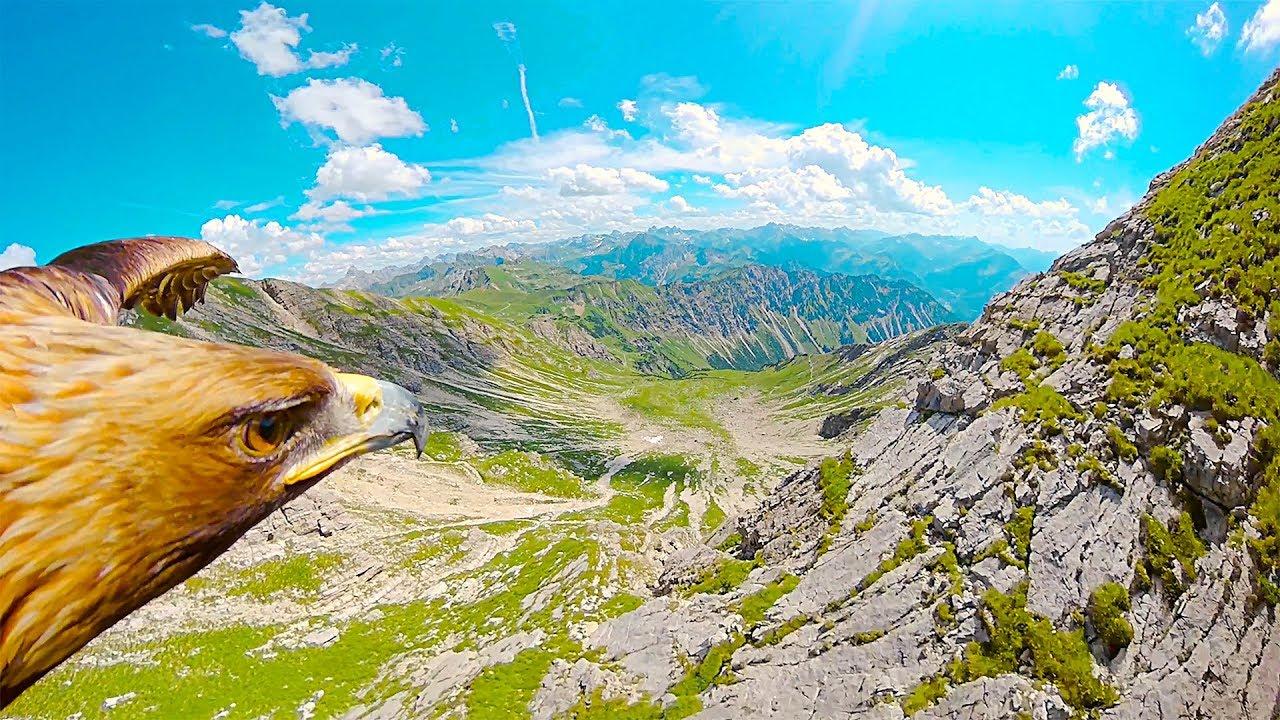 Альпийские горы глазами орла