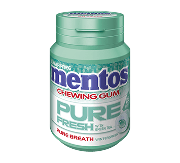 Mentos Pure Fresh Gum - Wintergreen