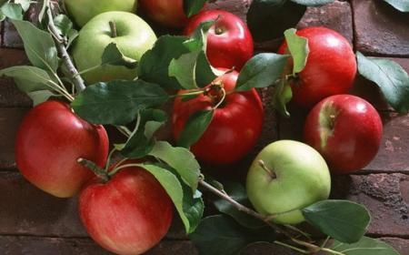 Праздник на яблочный спас