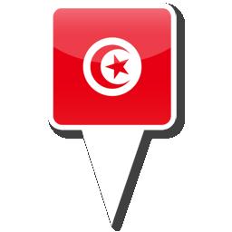 Тунис на каком материке