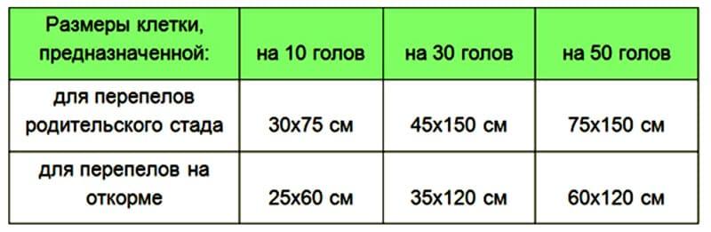 Рекомендуемые размеры клеток для перепелов