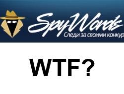 SpyWords, WTF? Правдивый отзыв о Спайвордсе