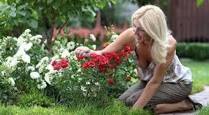 Девушка сажает цветы